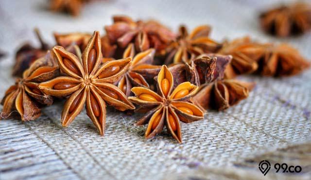 7 Manfaat Bunga Lawang bagi Tubuh | Si Rempah Ajaib yang Belum Banyak Diketahui
