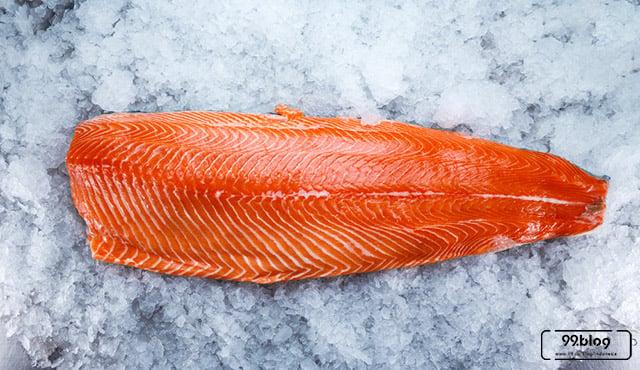 7 Manfaat Ikan Salmon untuk Kesehatan | Pas untuk Dikonsumsi Dewasa sampai Bayi