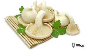 manfaat jamur tiram