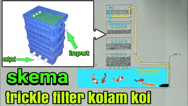 filter kolam ikan
