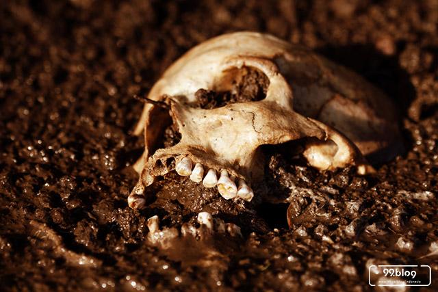 mengubah jenazah jadi kompos