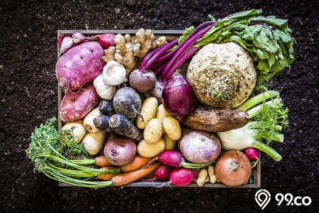 menu diet vegan