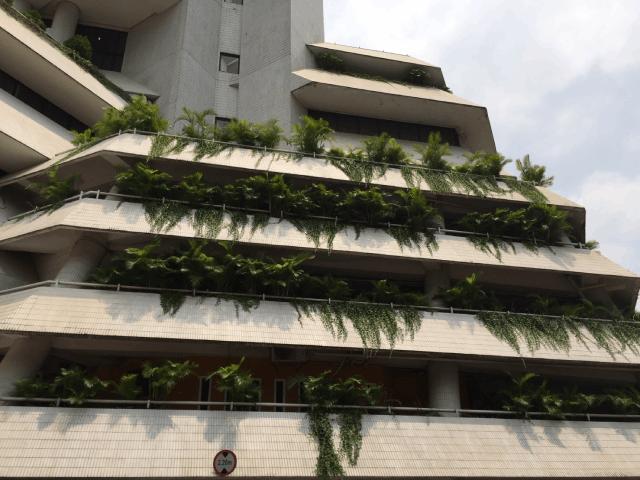 atap miring gedung intiland