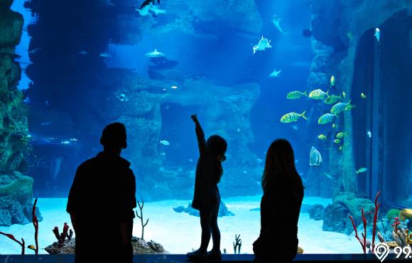 museum pemandangan laut