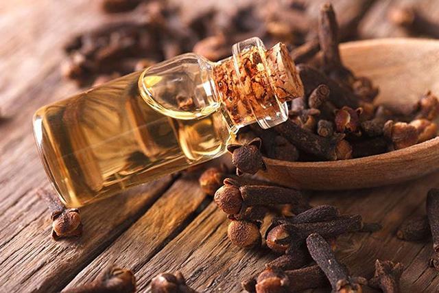 obat herbal untuk sakit gigi