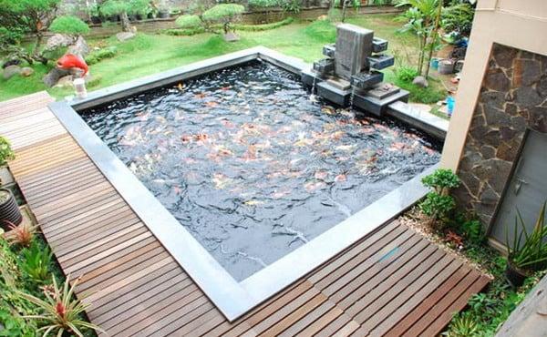 kolam ikan bentuk kotak