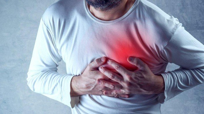 sirih merah untuk obati penyakit jantung koroner