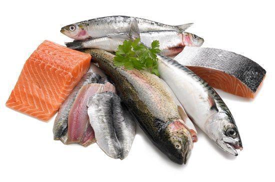 ikan sarden dan salmon