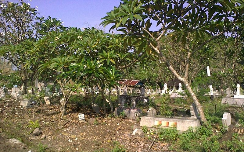 tanaman kuburan