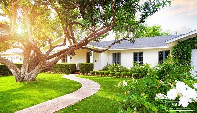 pohon peneduh rumah