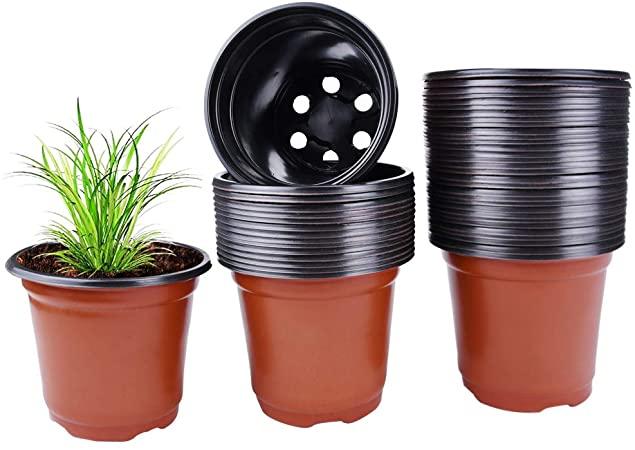 tempat tumbuhan berbahan plastik