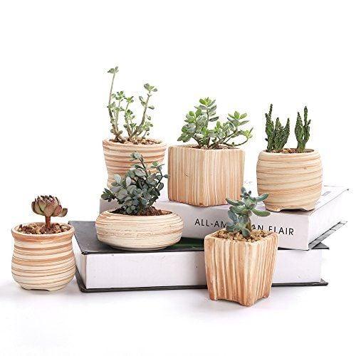 pot tanaman kayu