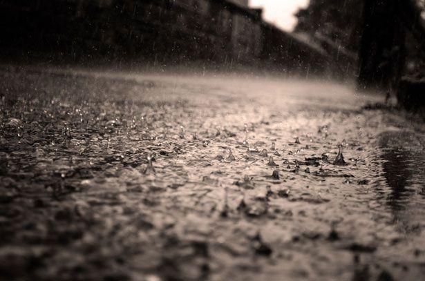 bau hujan petrichor
