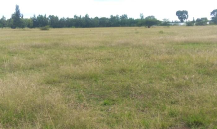 kelebihan tanah