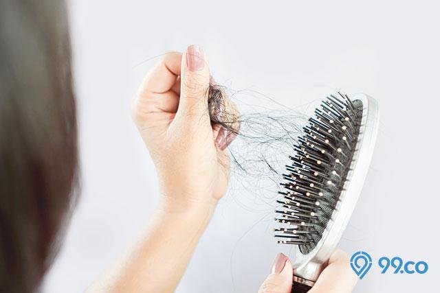 manfaat pepaya untuk rambut rontok