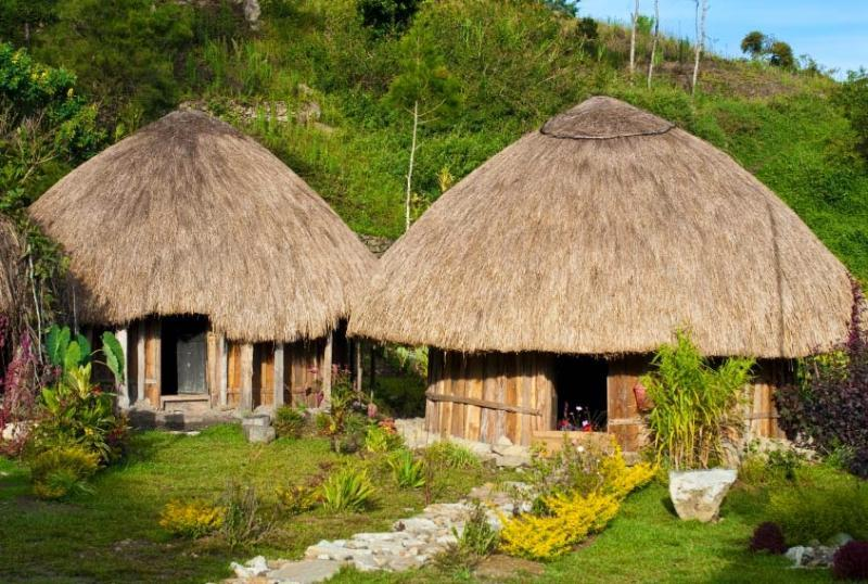 honai rumah adat papua