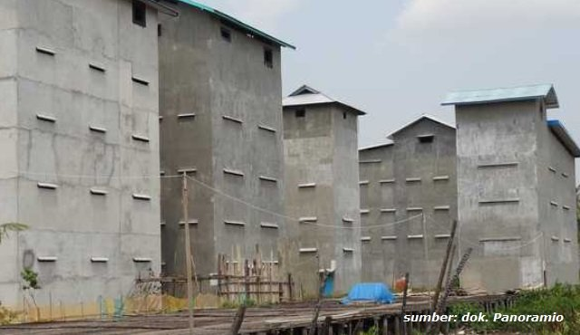 rumah walet