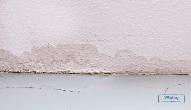dinding rembes musim hujan