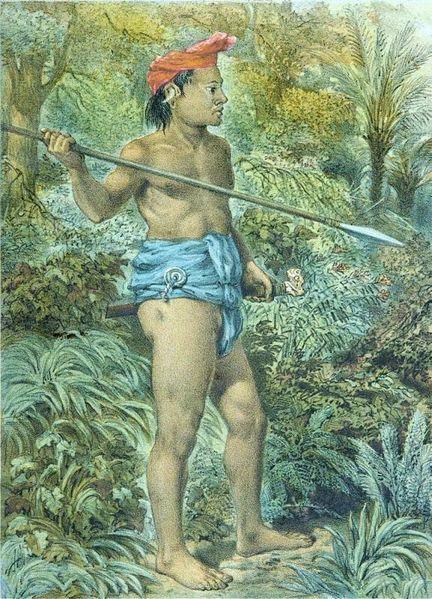 gambar seorang penduduk suku dayak punan dengan tombak