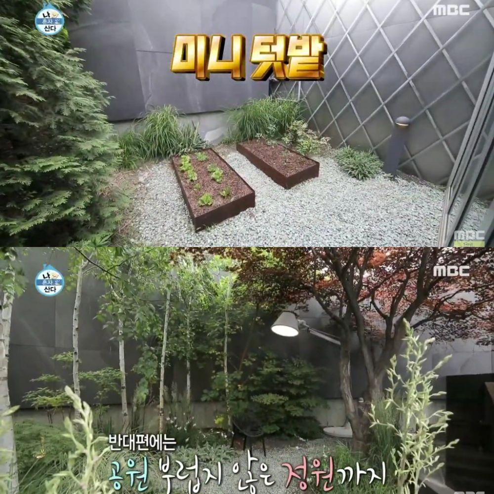 taman di rumah aktor korea