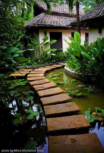 taman kolam teratai