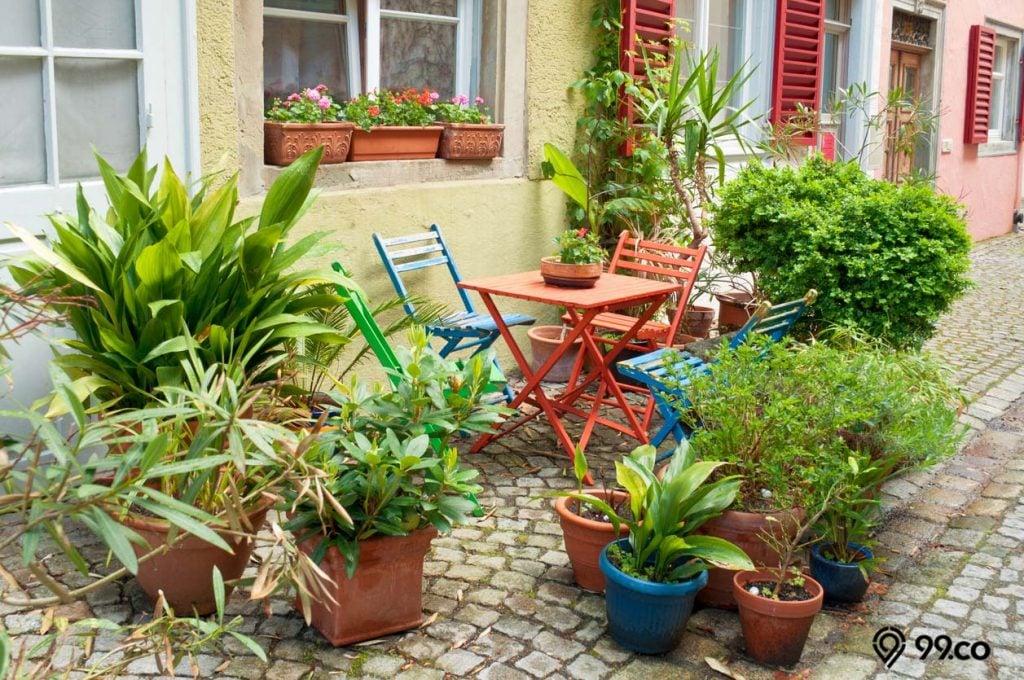 kebun kecil di pinggir jalan