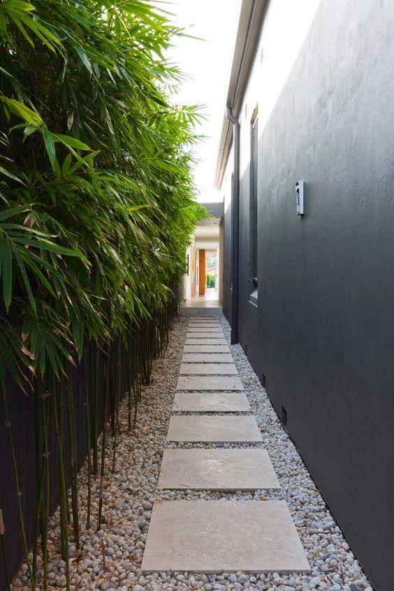 taman samping bambu hias