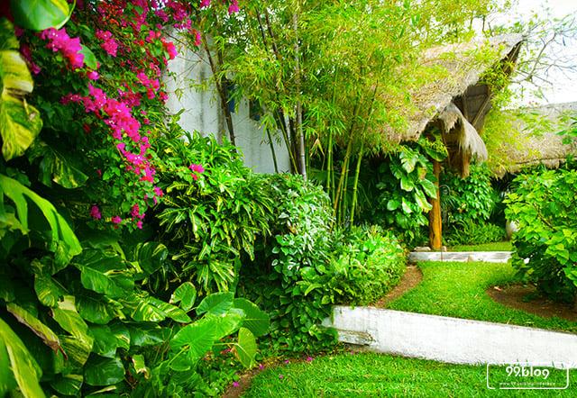 taman tropis bali di rumah
