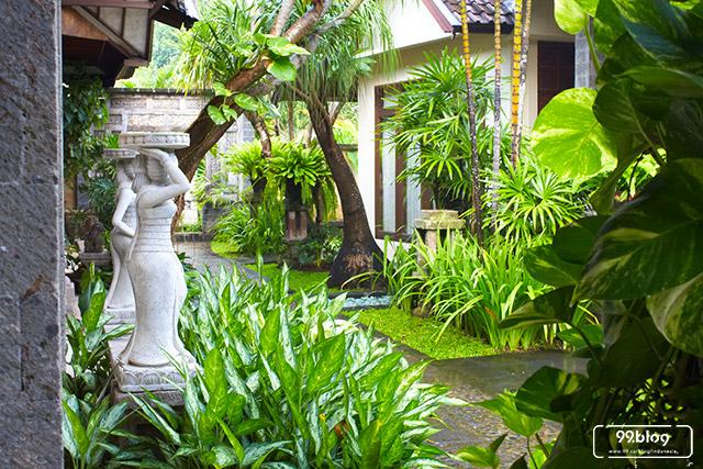 5 Cara Membuat Taman Tropis Bali Di Rumah Sendiri