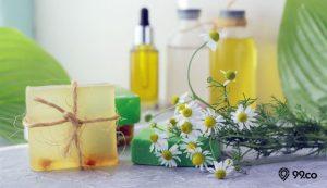 tanaman antiseptik
