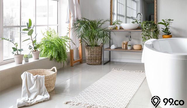 tanaman hias yang cocok di kamar mandi