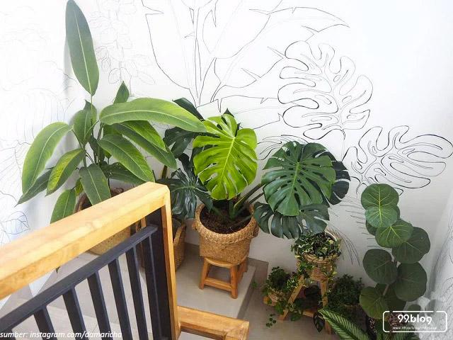dekorasi tropical