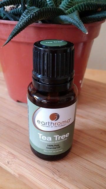 botol tea tree oil