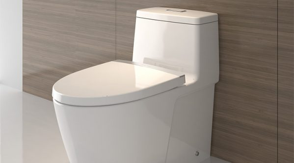 toilet duduk american standard