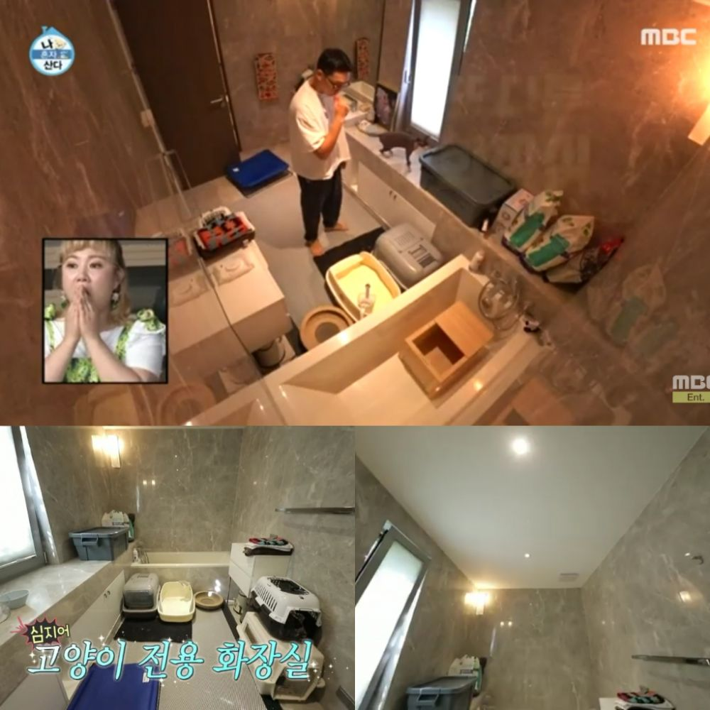 toilet kucing yang mewah milik aktor korea