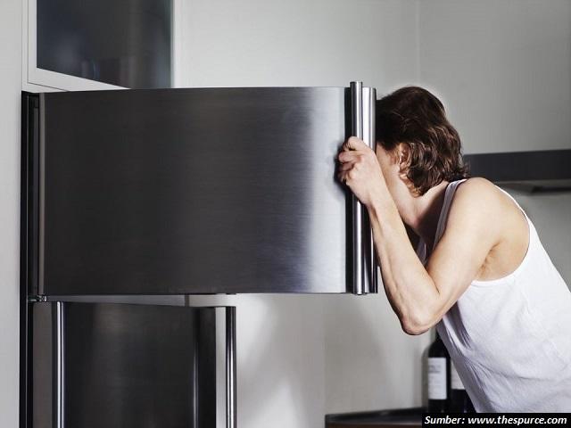 freezer kulkas