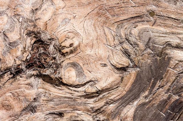 kayu berserat