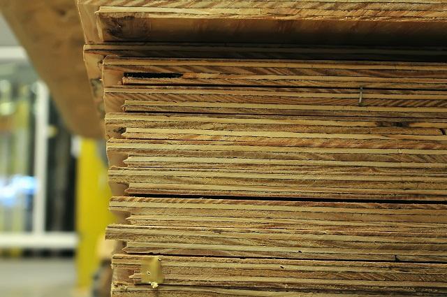 kayu multiplek