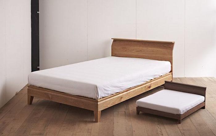 tempat tidur kucing