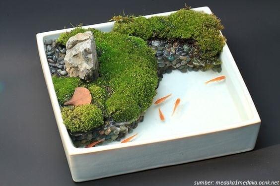 21 Desain Kolam Ikan Mini Dari Pot Bekas Hemat Tempat